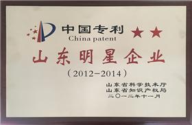 中国专利山东明星企业.png